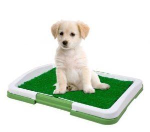 Toaleta pre psíkov-Puppy potty pad